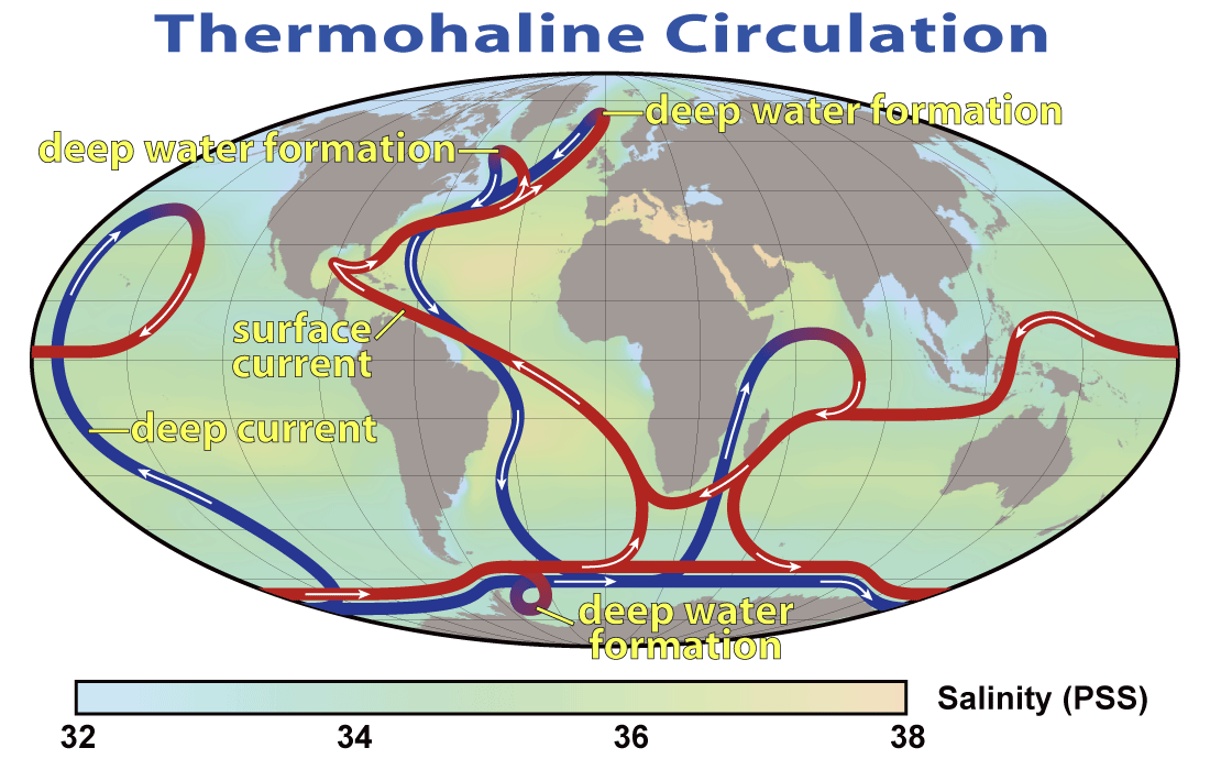 Thermohaline circulation - Wikipedia