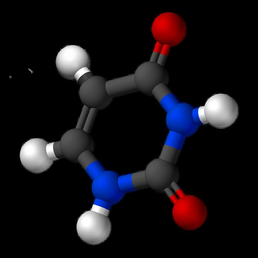 File Uracil 3d Balls Png Wikimedia Commons