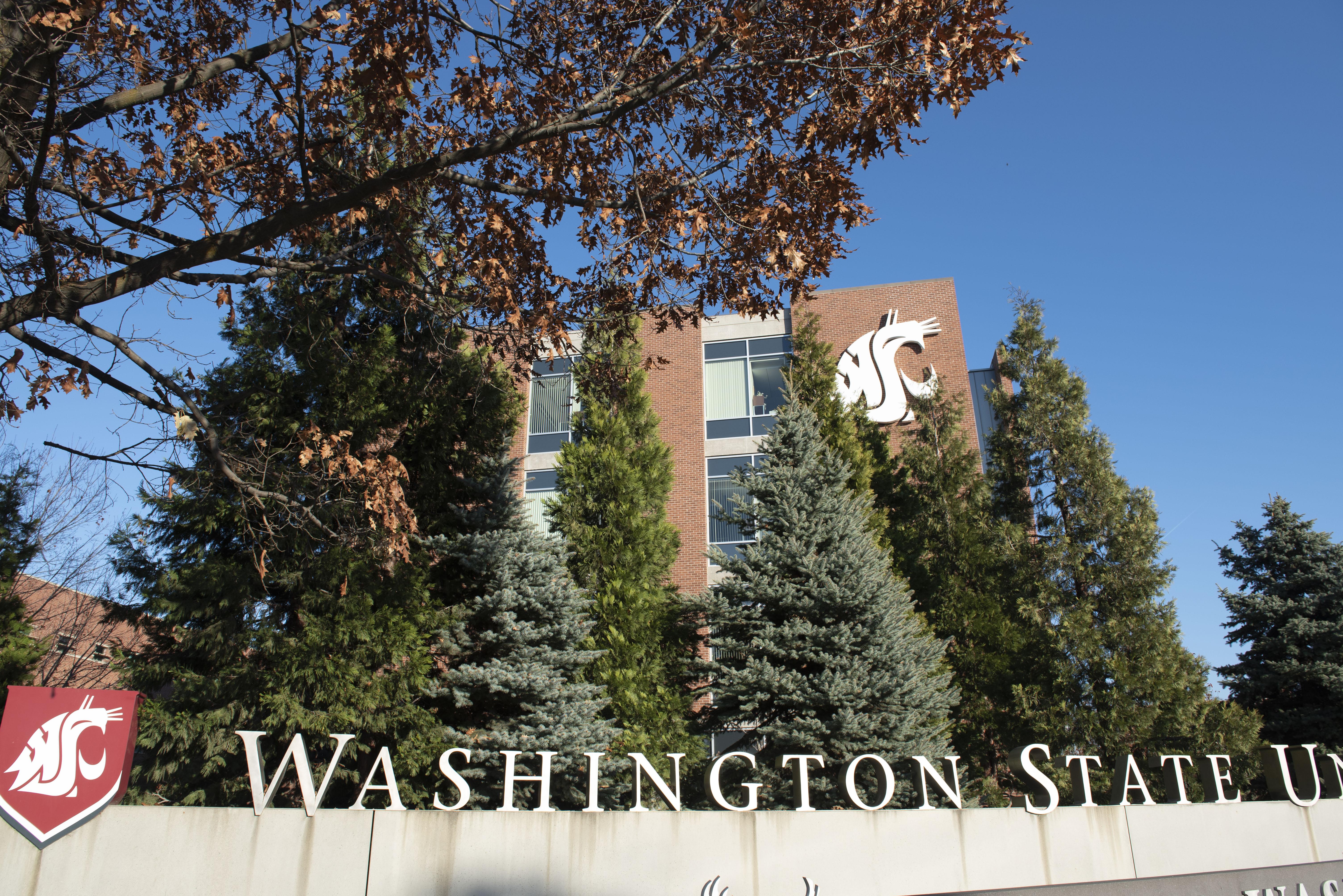 Washington State University College Of Nursing Wikipedia