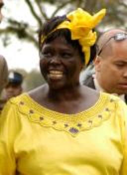 Alumna Wangari Maathai has won multiple international awards including the 2004 Nobel Peace Prize and is the subject of the documentary film Taking Root.
