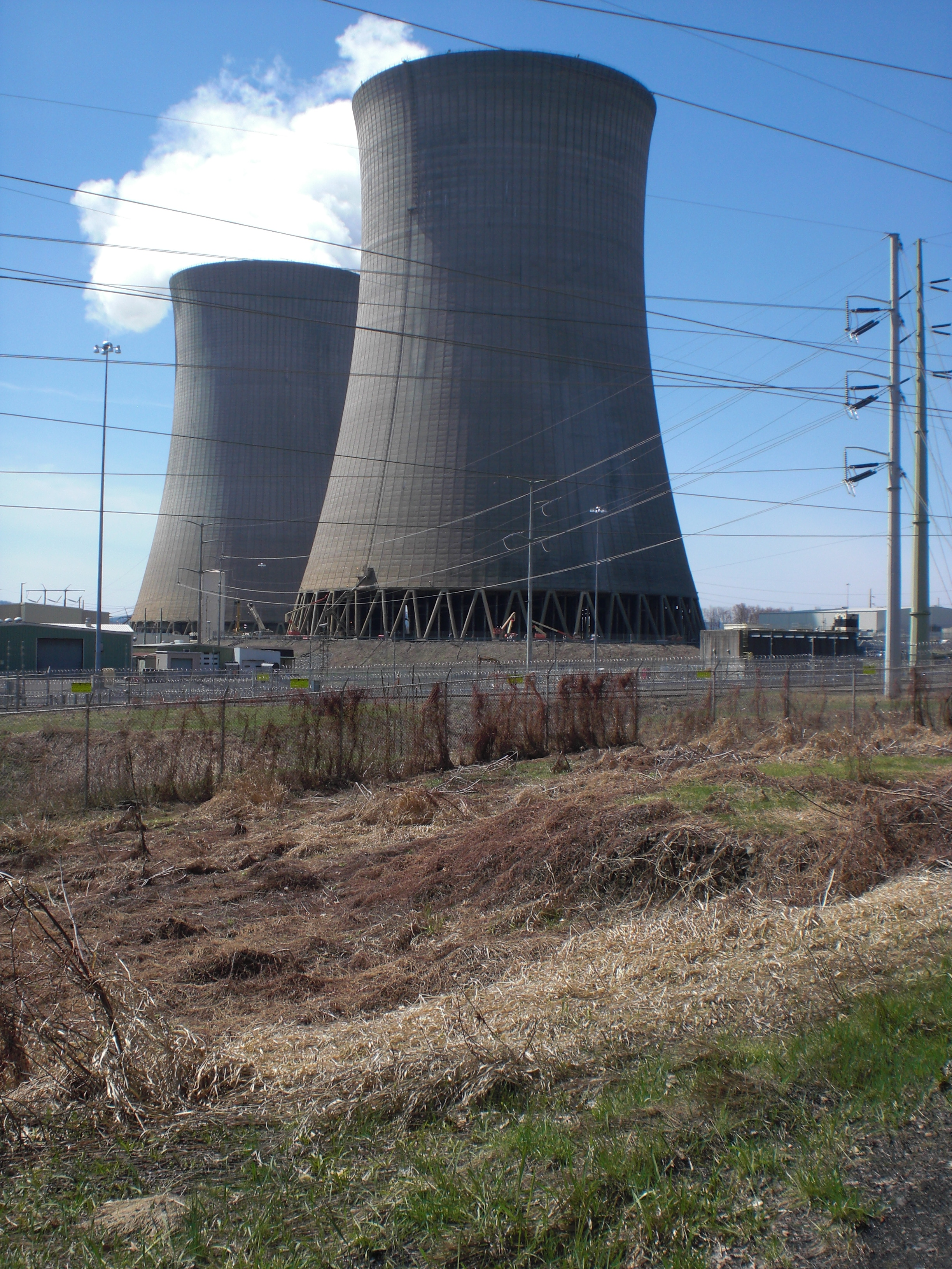 File Bell Bend Nuclear Power Plant cooling towers from the north