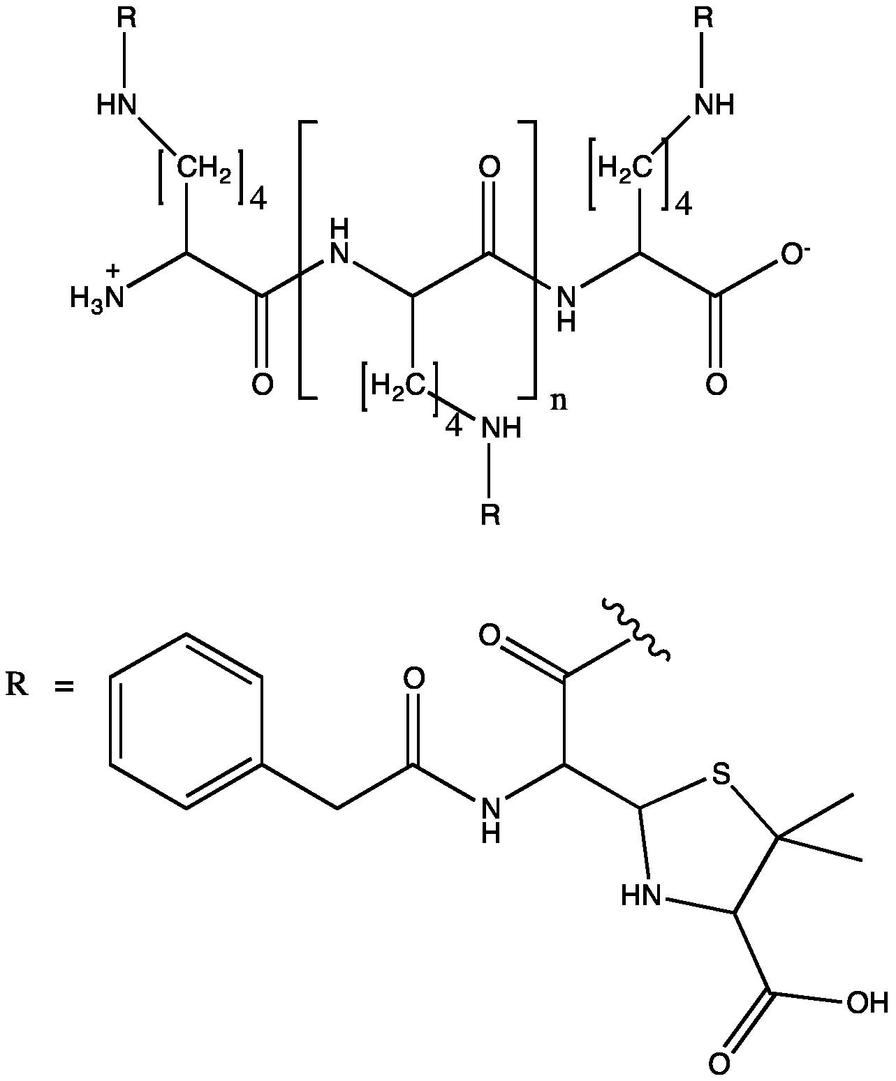 polylysine  epsilon polylysine  epsilon