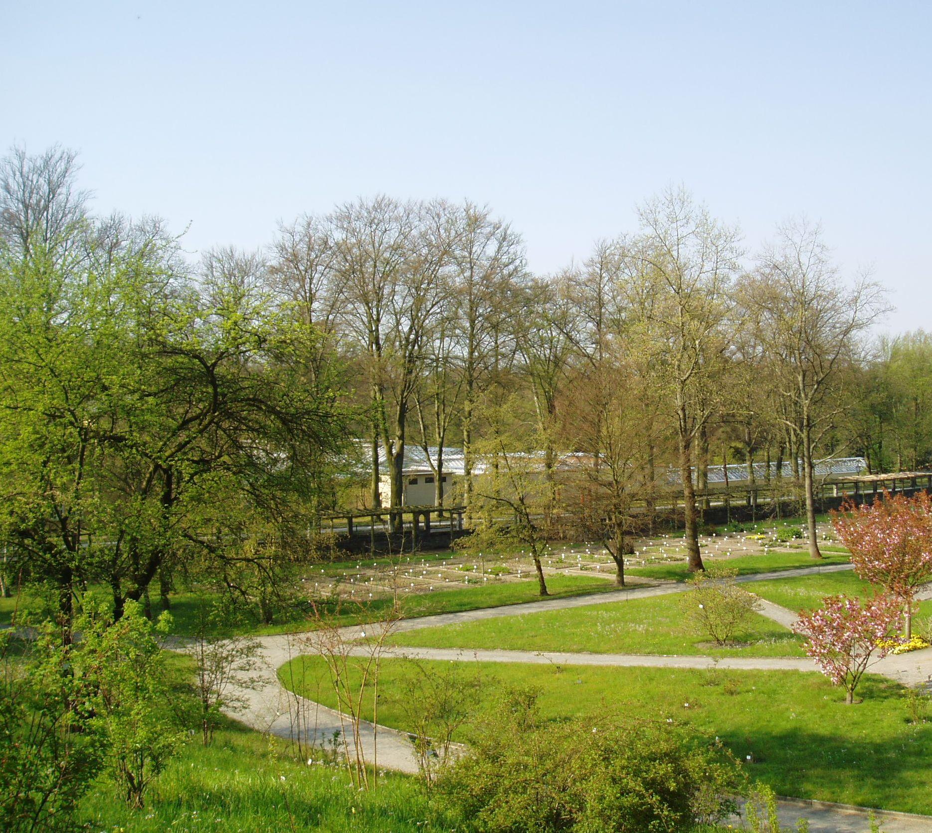Filebotanischer Garten Potsdamjpg Wikimedia Commons