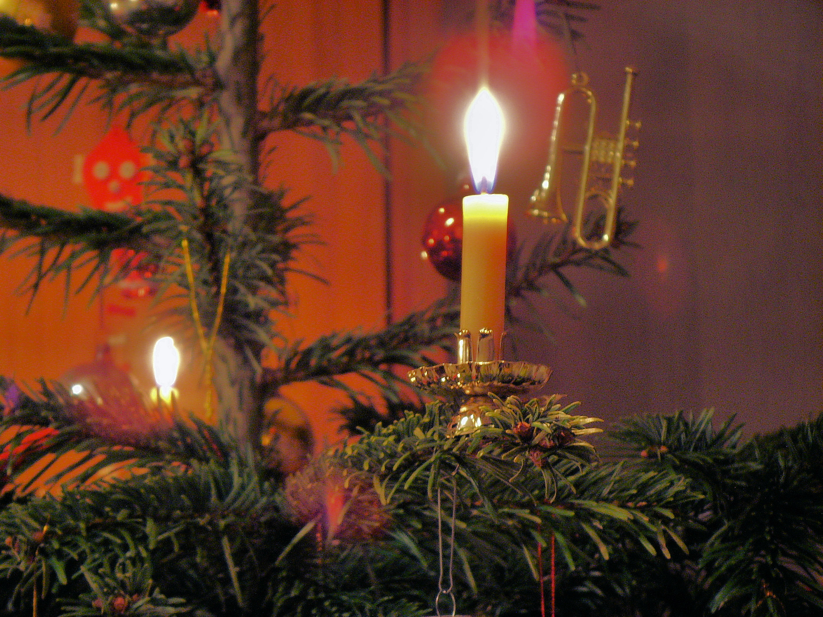 File:Candle on Christmas tree 2.jpg - Wikimedia Commons