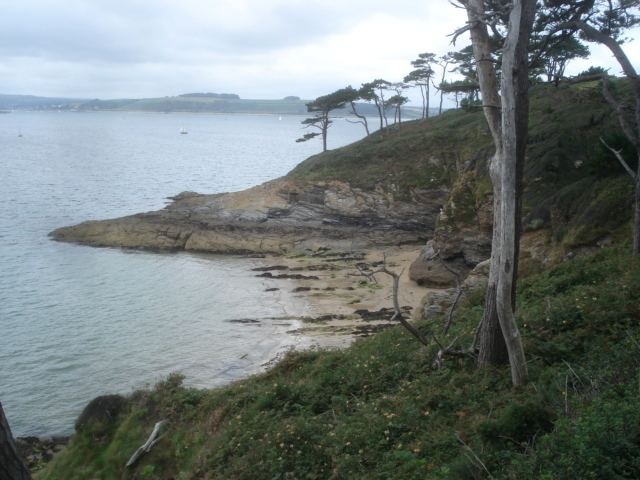 Carricknath Point - geograph.org.uk - 565044
