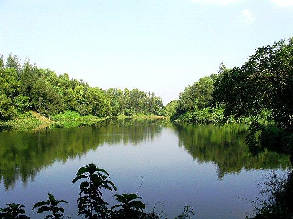 Foy's Lake