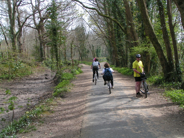 Cyclists on the Plym Valley cyclepath, part of National Cycle Route 27 - geograph.org.uk - 1830860