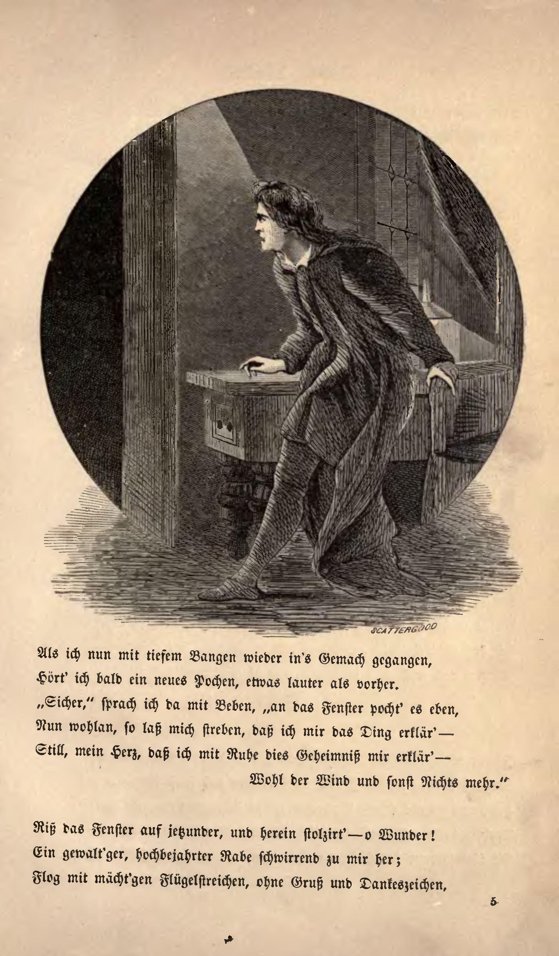 Der Rabe Poe