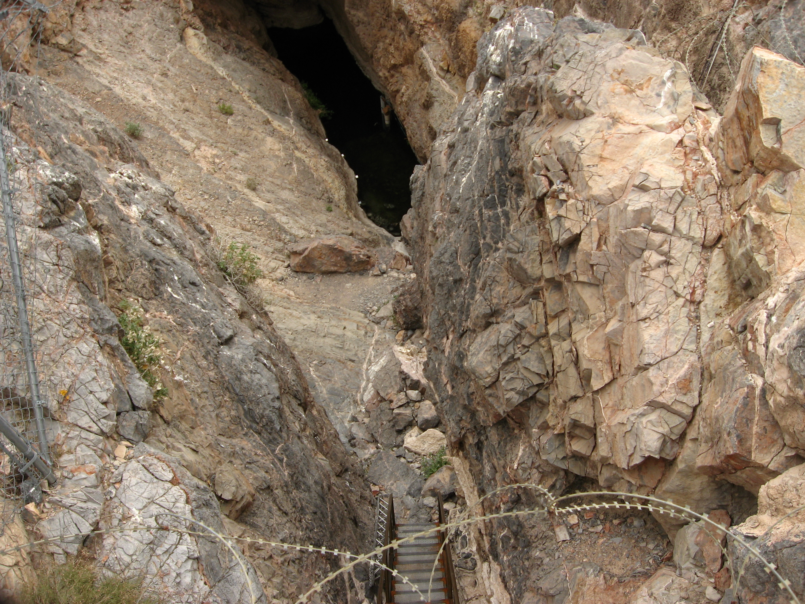 Devils Hole Is Home To What Naturally Occurring Endangered Critter