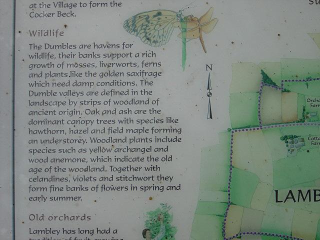 Dumbles wildlife - geograph.org.uk - 1013783