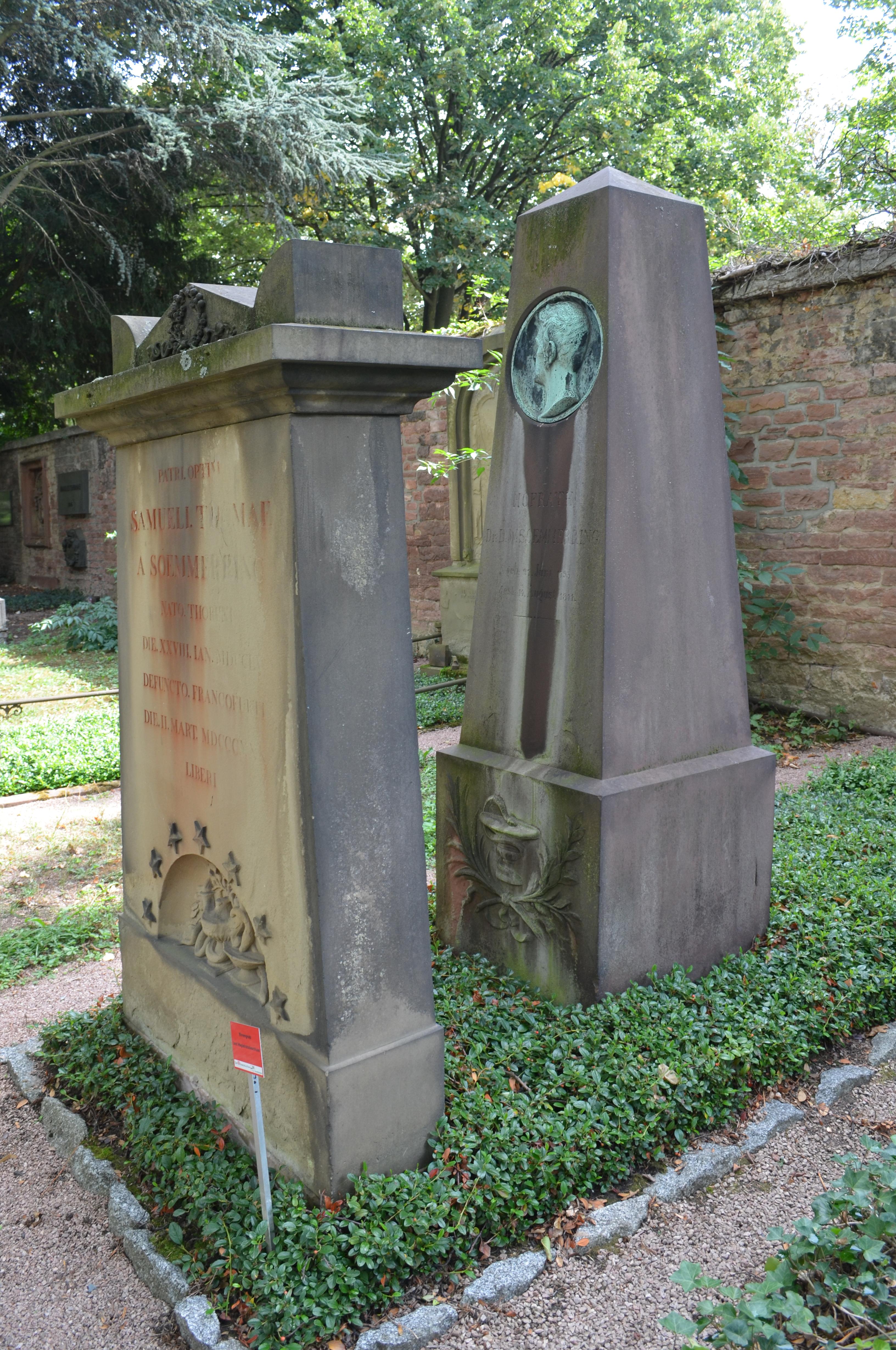 Dateifrankfurt Hauptfriedhof Grab Adm 178 Rittershausen