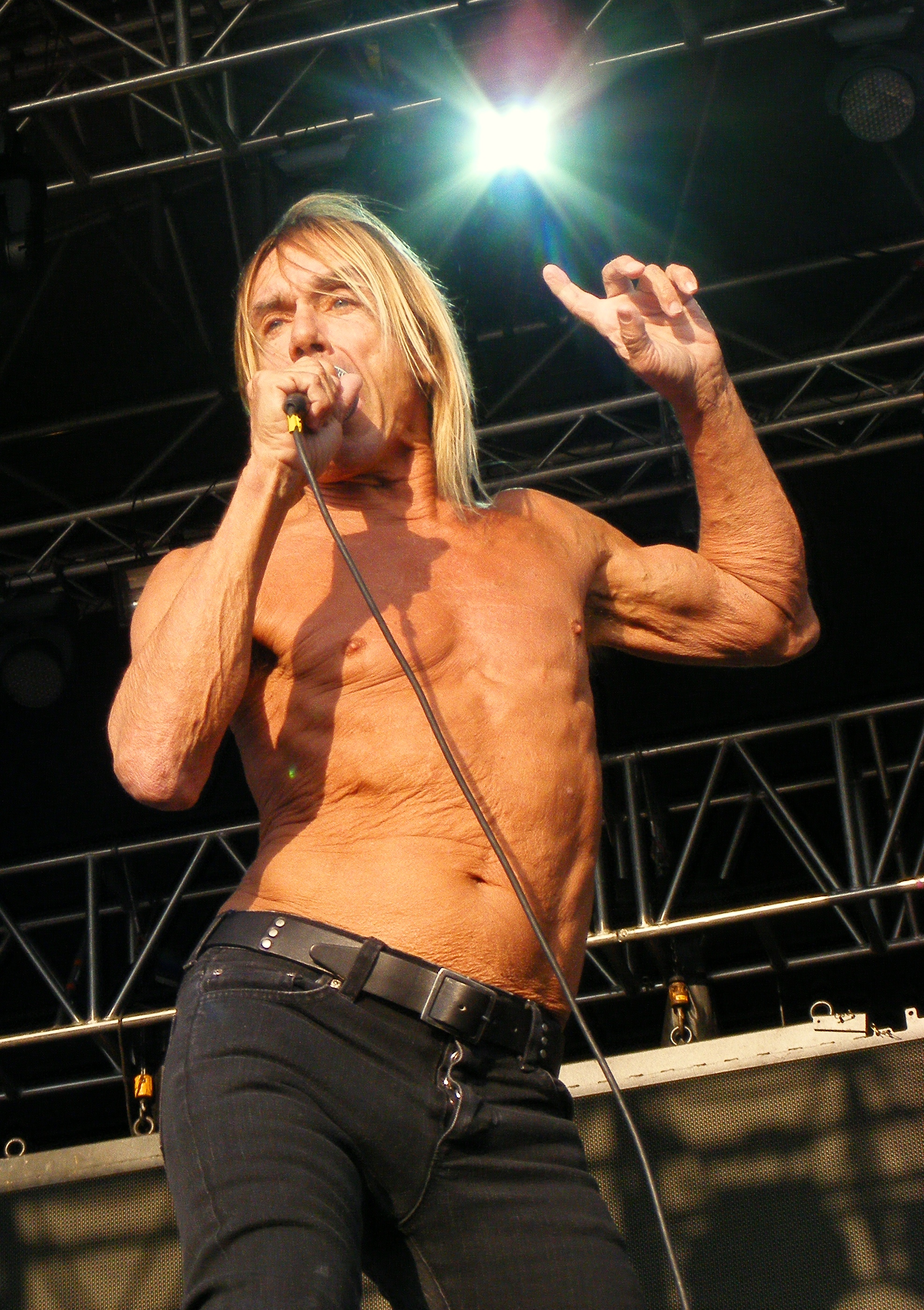 The 71-year old son of father James and mother Louella Iggy Pop in 2019 photo. Iggy Pop earned a  million dollar salary - leaving the net worth at 15 million in 2019