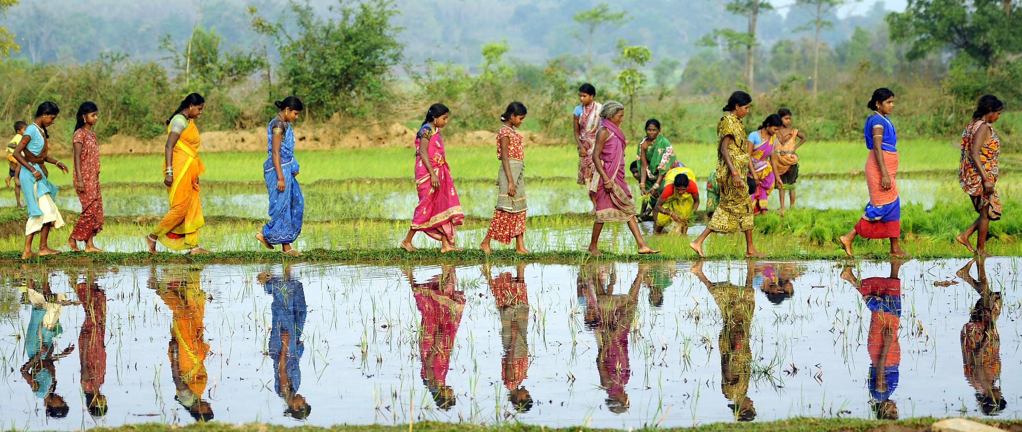 rural development essays india Free rural areas papers, essays  the rural women of india new economic opportunities and threats are opened up towards rural development rural areas in.