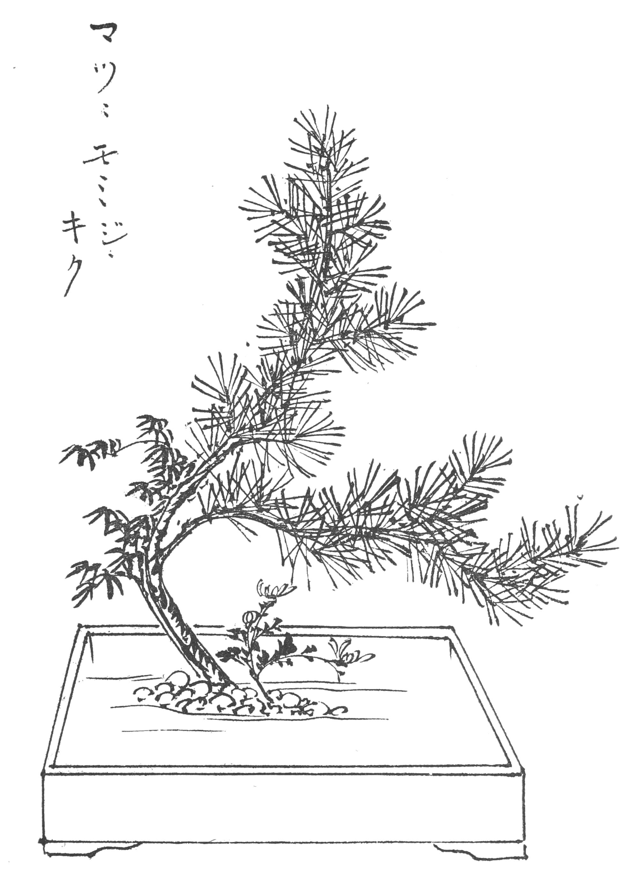 File Japanese flower arrangement p163 Wikimedia mons