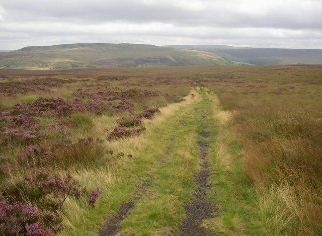 Kirklees Way, Slaithwaite Moor, Slaithwaite - geograph.org.uk - 548110