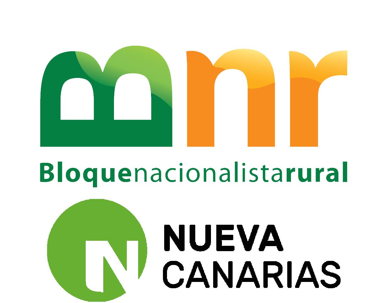 Resultado de imagen de Sosa Monzón (Bloque Nacionalista Rural-Nueva Canarias, BNR-NC