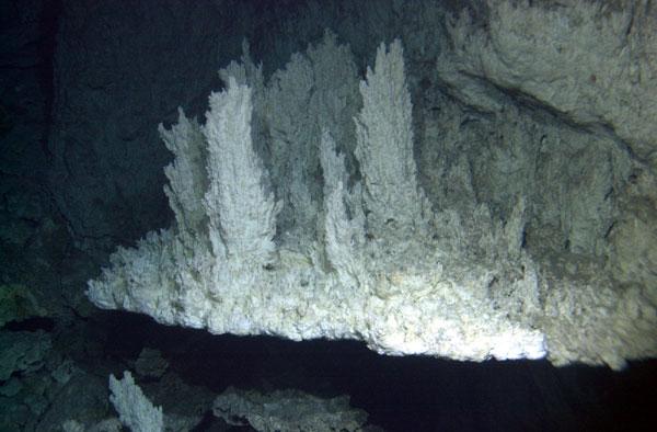 Calcium Carbonate Chimneys