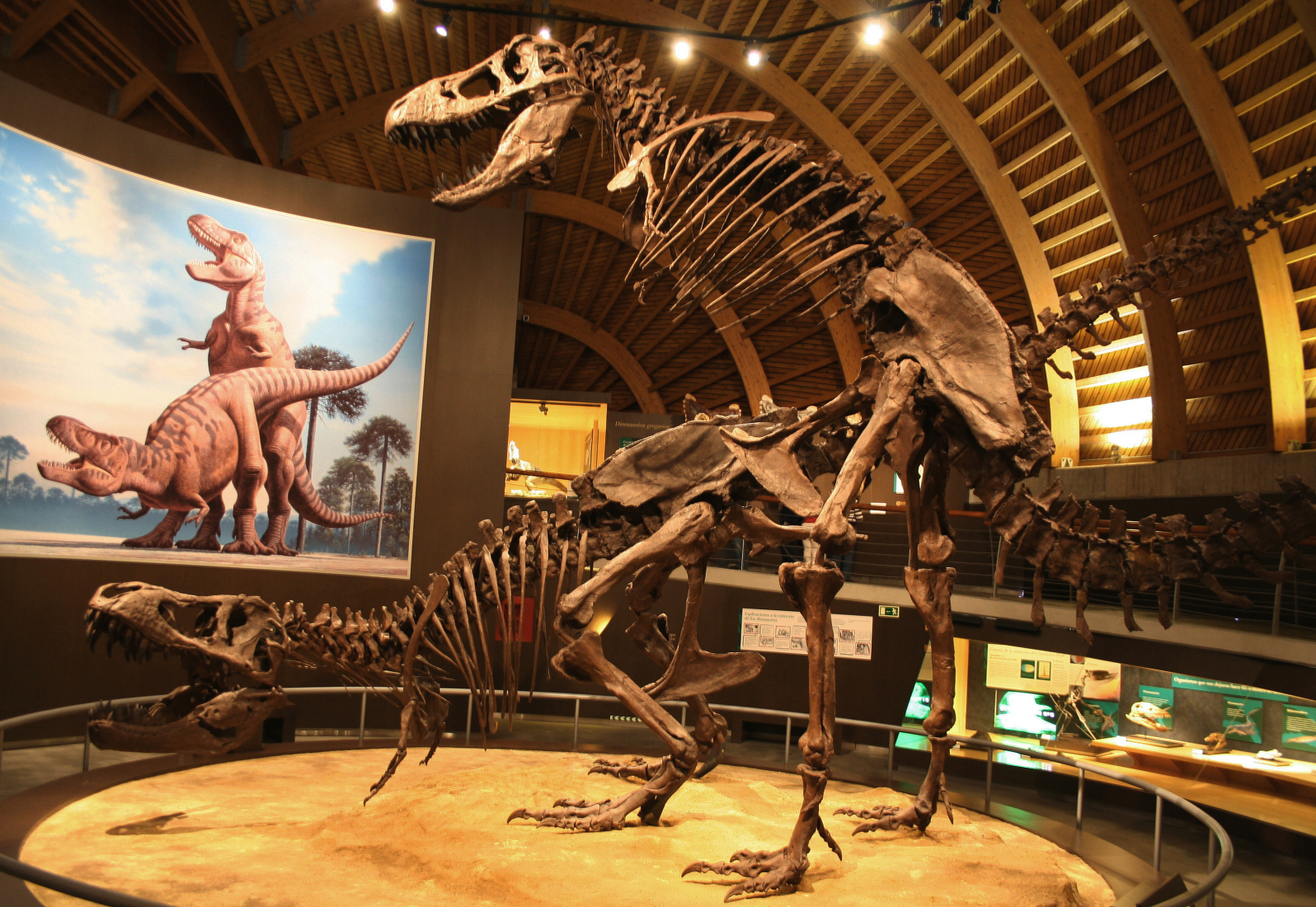 TIL there is a museum in Spain that shows two T. Rex ...