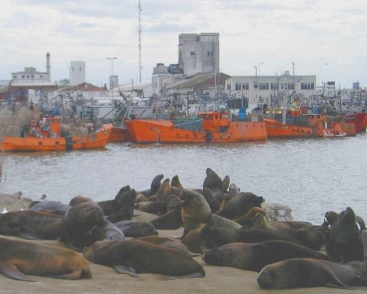 Puerto De Mar Del Plata Wikipedia La Enciclopedia Libre