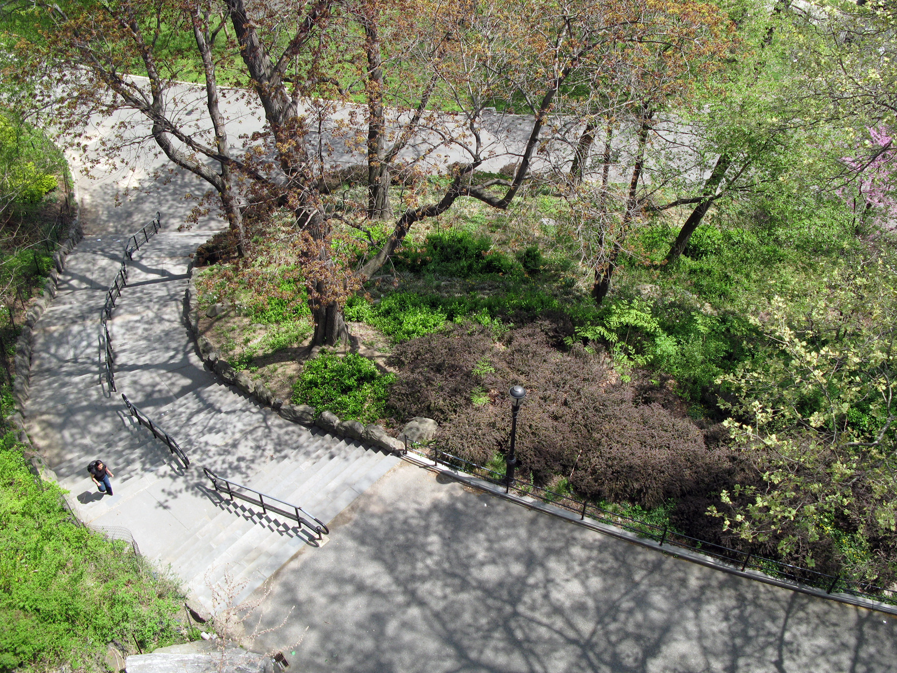concrete and clay reworking nature in new york city