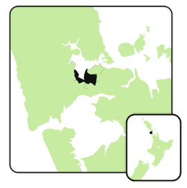 Mt albert electorate 2008.png
