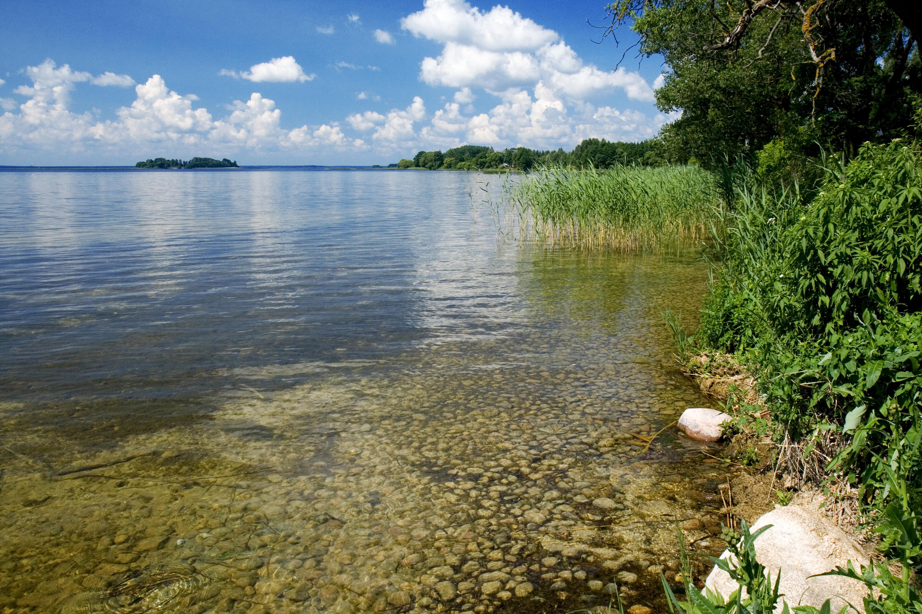 Реферат про озеро нарочь 1591
