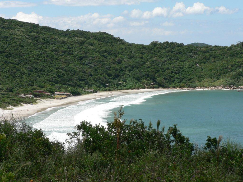 praia de naufragados em florianopolis uma das melhores do estado