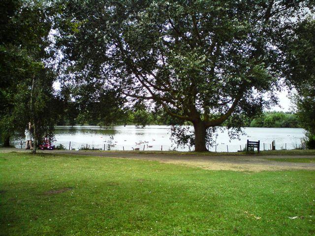 Needham Lake - geograph.org.uk - 1410222