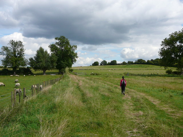 On the Aylesbury Ring Path at Butler's Cross - geograph.org.uk - 649016
