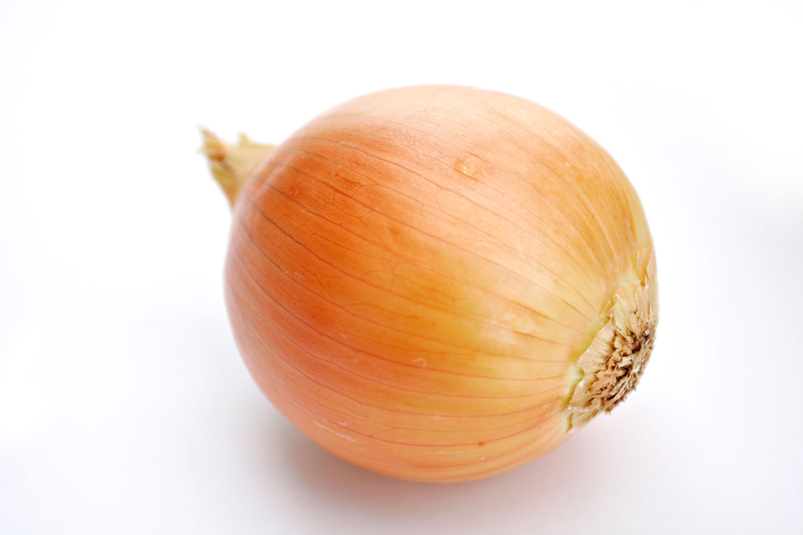 File:Onion white background.jpg - Wikipedia