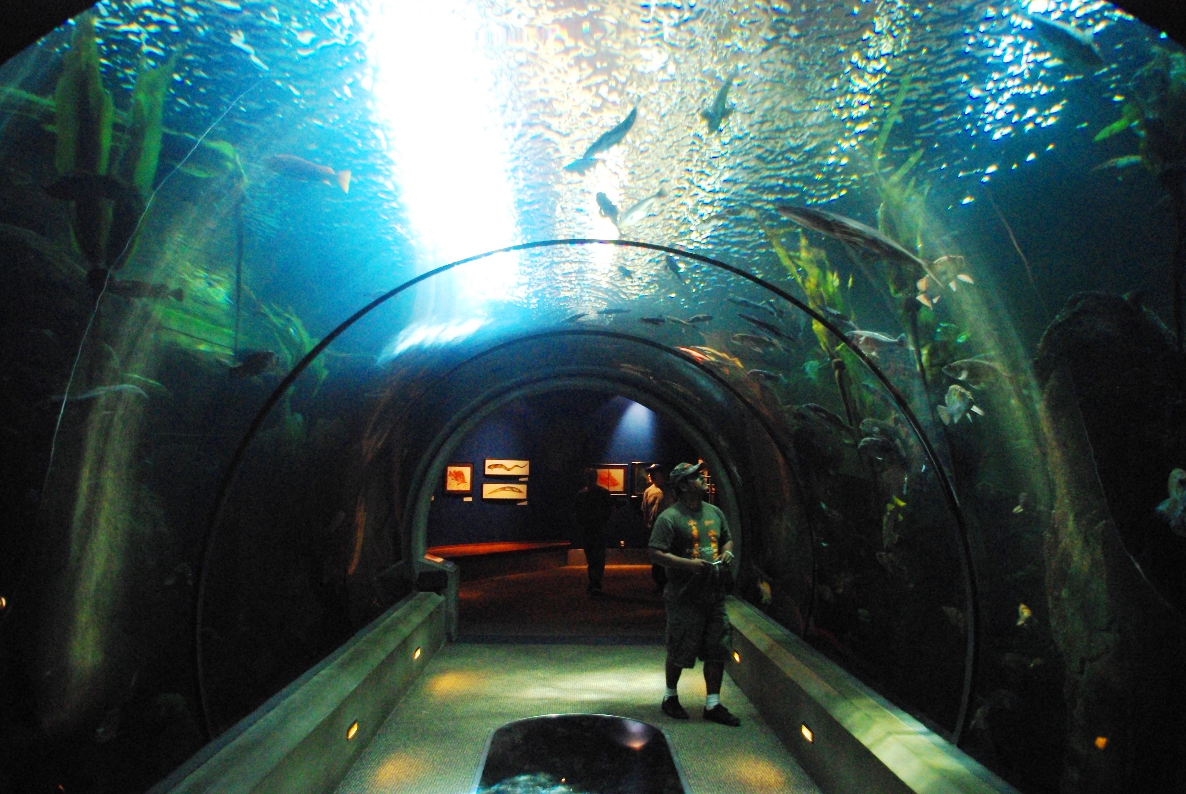 Image Result For Oregon Aquarium