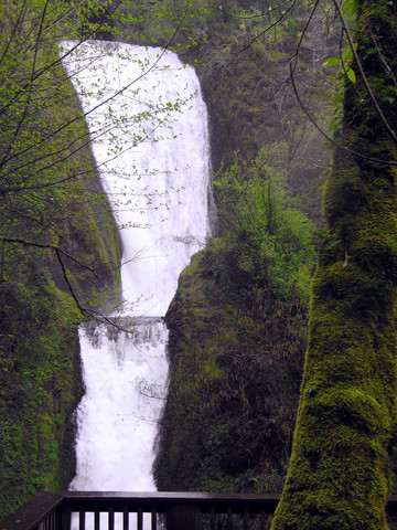 Mt Hood And Columbia Gorge Travel Guide At Wikivoyage