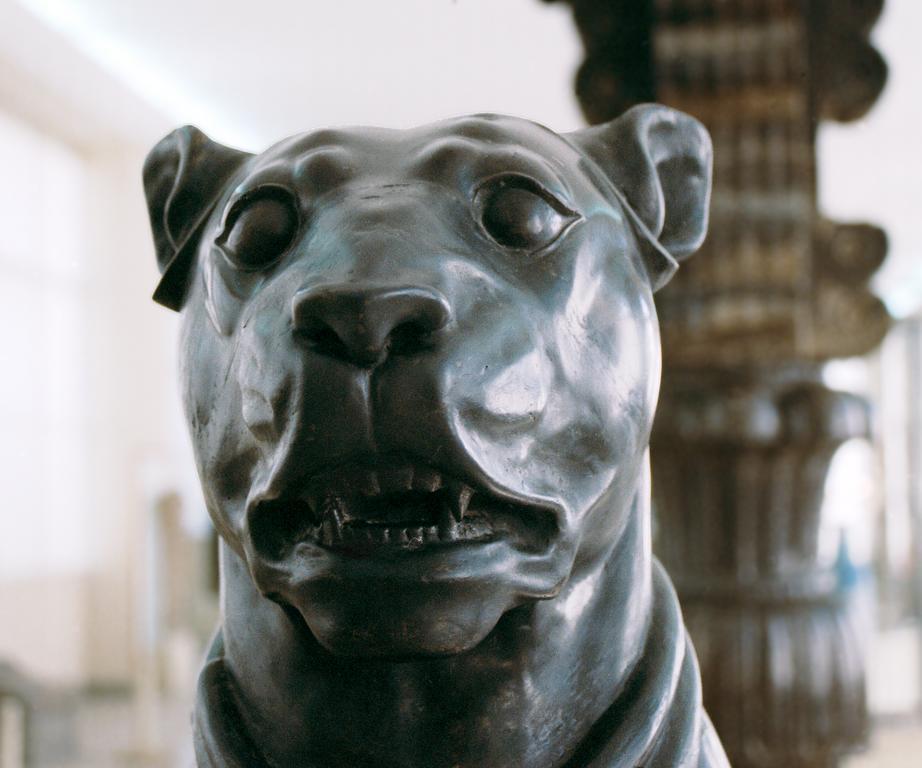 File:Persepolis - statue of a mastiff.jpg - Wikimedia Commons