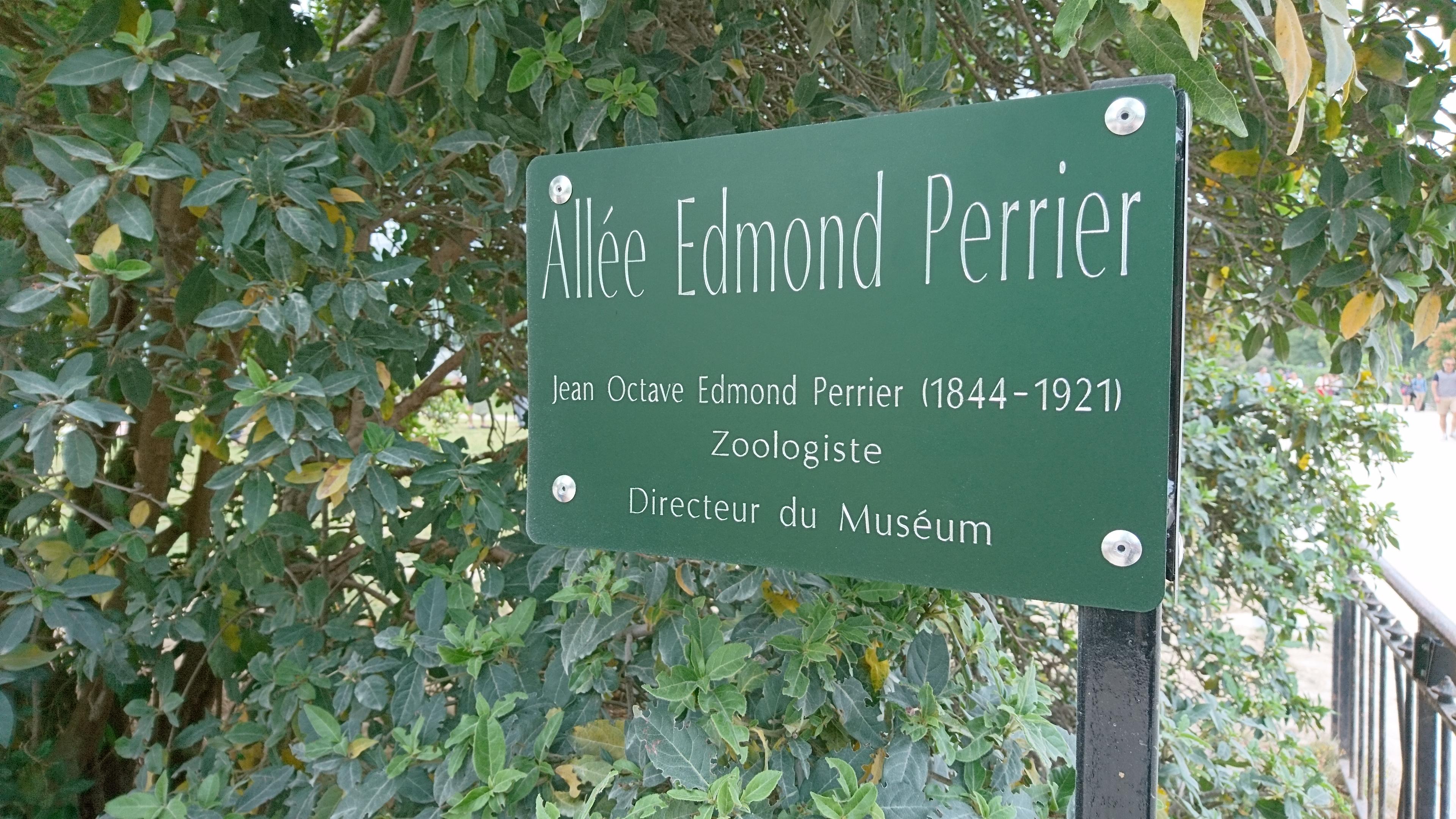 File Plaque allée jardin des plantes 2 Wikimedia mons