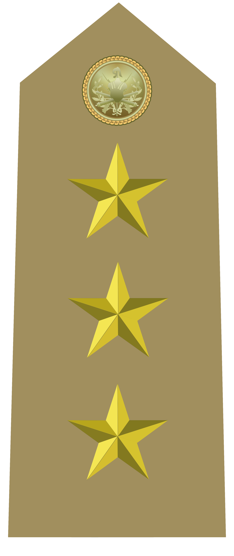 File:Rank insignia of capitano of the Italian Army (1945 ...