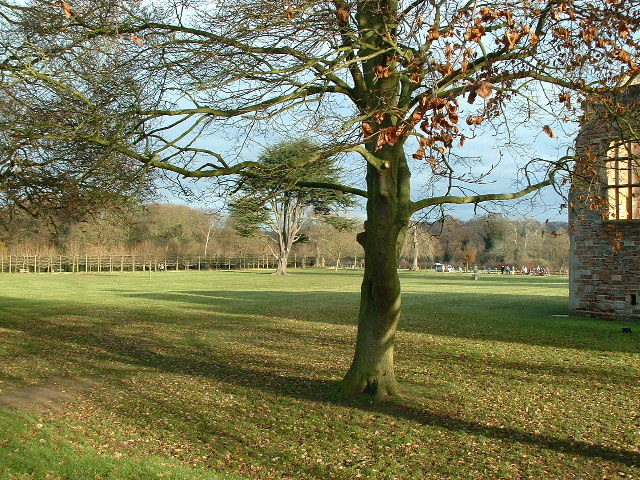 Rufford Country Park - geograph.org.uk - 92495