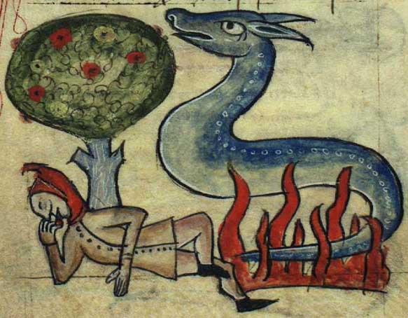 File:Salamander in fire.jpg