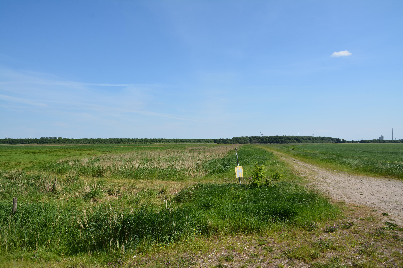 new concept 26949 52f4f File:Schleswig-Holstein, Dithmarschen, Naturschutzgebiet ...