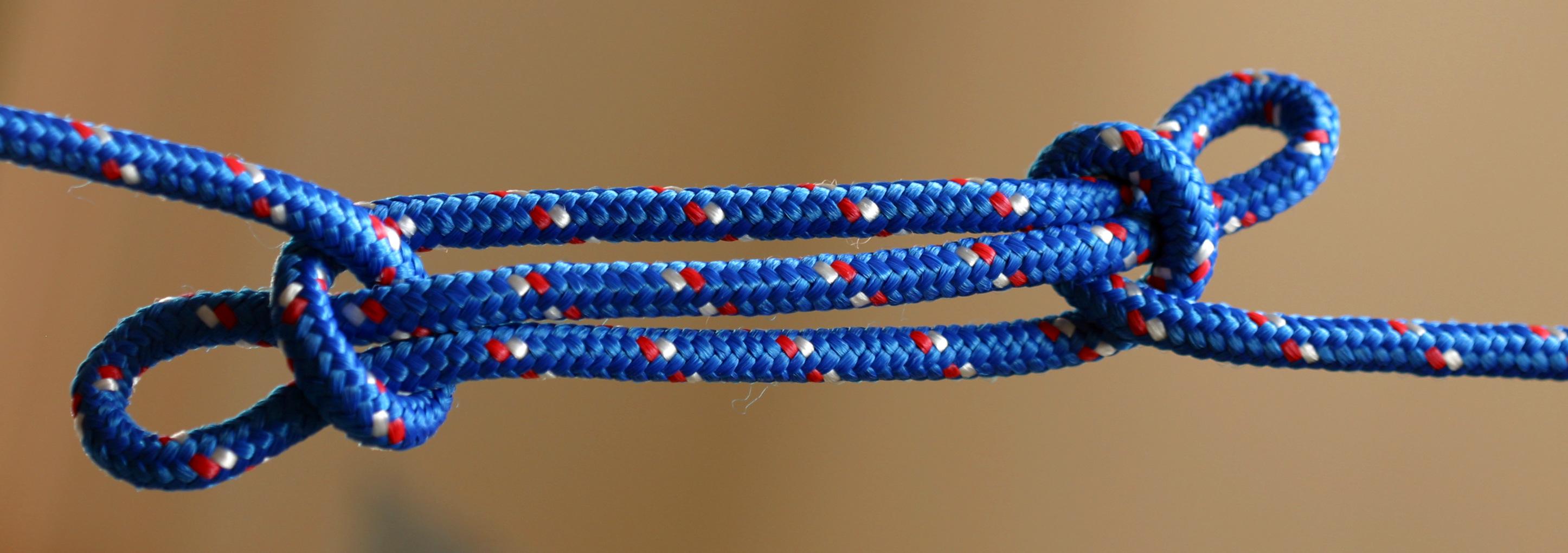 animated-knots