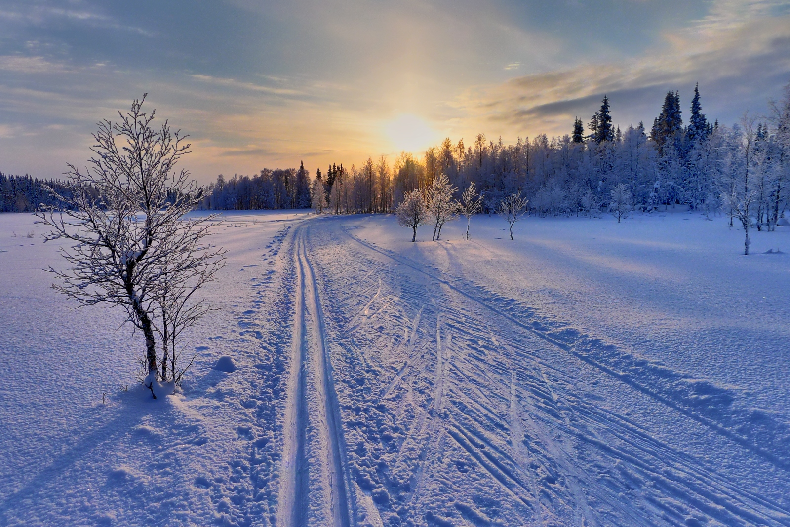 Image result for Winter wonderland of Finland
