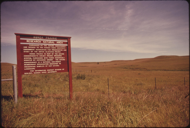 an acre of grass pdf