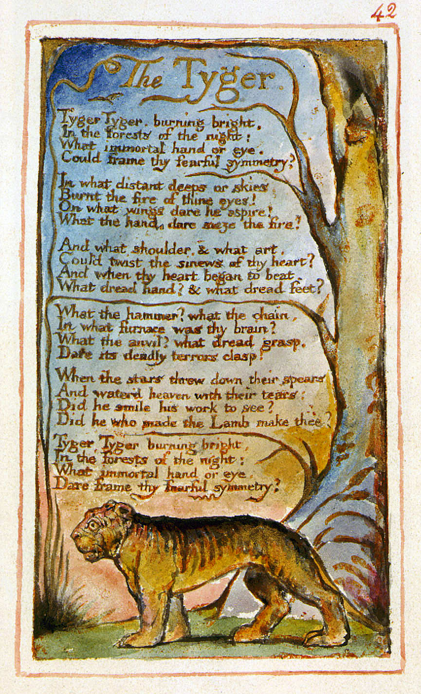 analysis on the poem the tiger George norton's close reading of william blake's 'the tyger' considers the poem's imagery through an introduction to 'the tyger' the tiger, powerful.