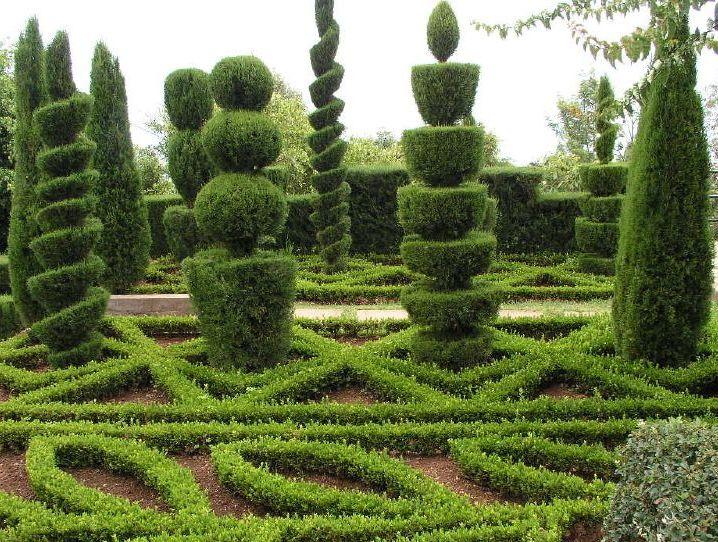 Ficheiro:Topiaria Jardim Botanico Funchal.jpg