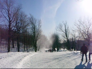 Snow whirlwind, similar to a dust devil, seen on Mount Royal in Montreal, Quebec, Canada. Tourbillon de neige.png