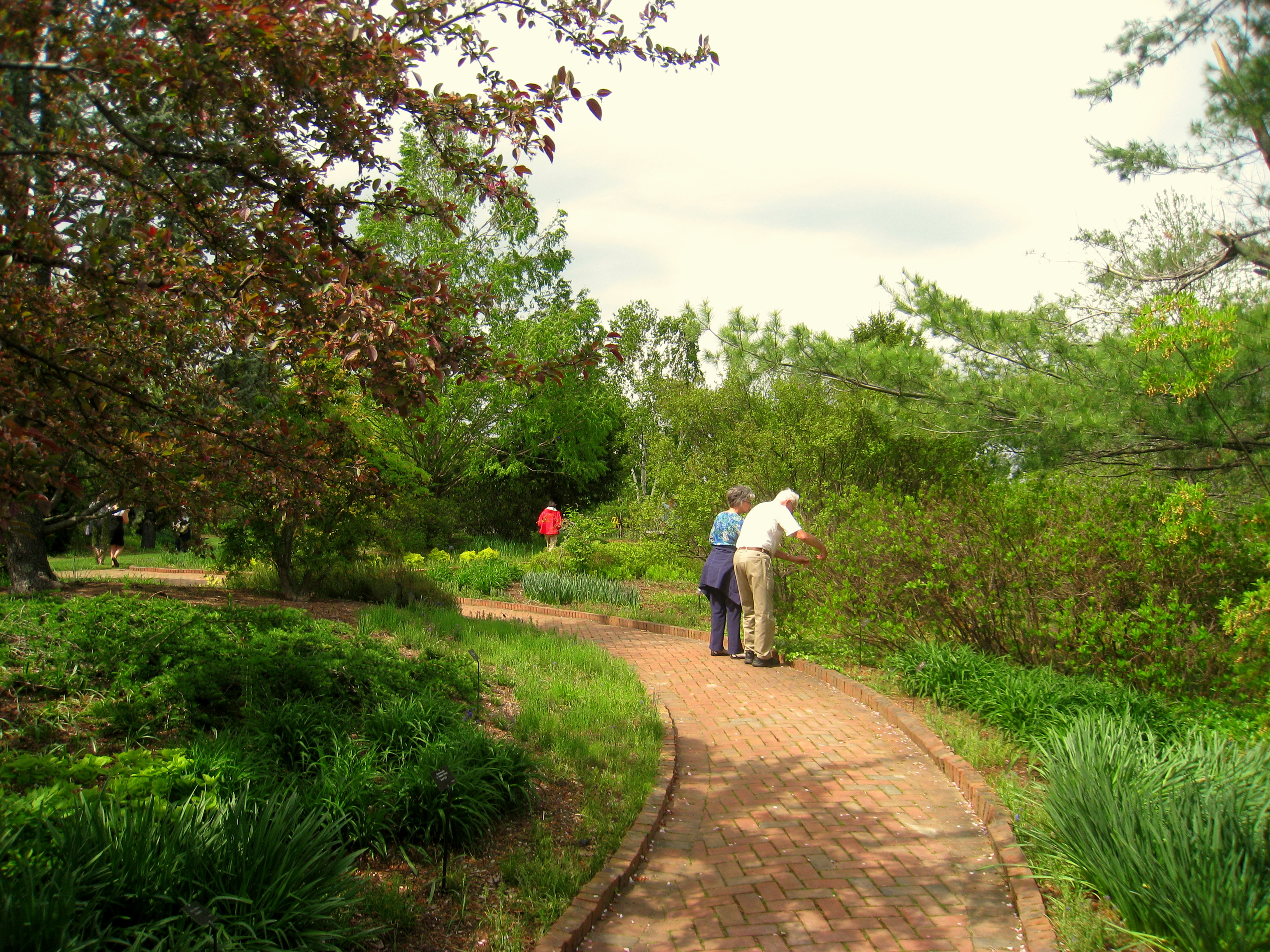 File tower hill botanic garden Types of pathways in landscaping