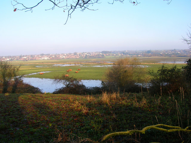 View Across Pulborough Brooks - geograph.org.uk - 297268