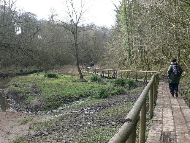 Wepre Park - geograph.org.uk - 709475