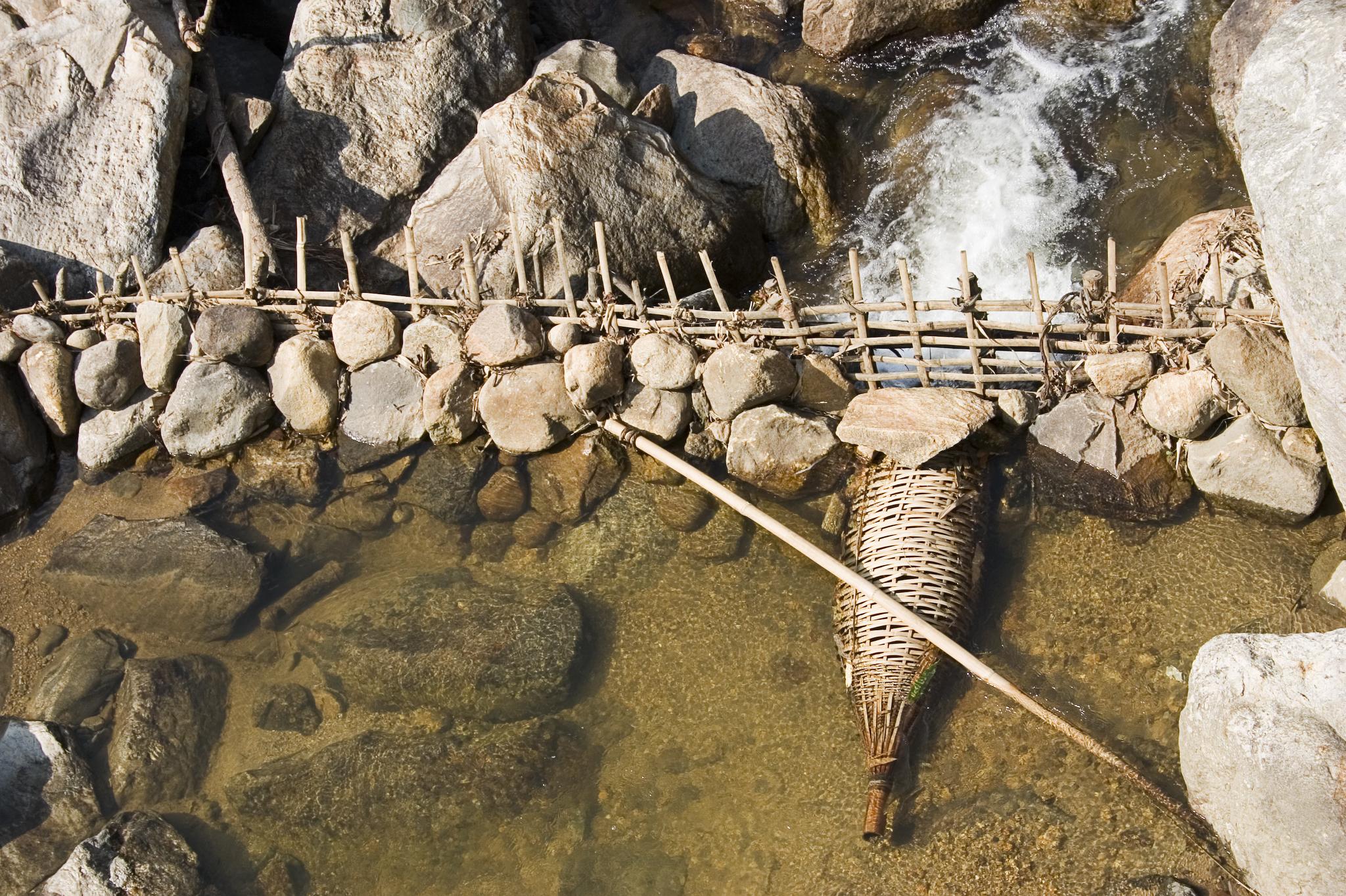 Tom clark buson fish trap for Homemade fish traps
