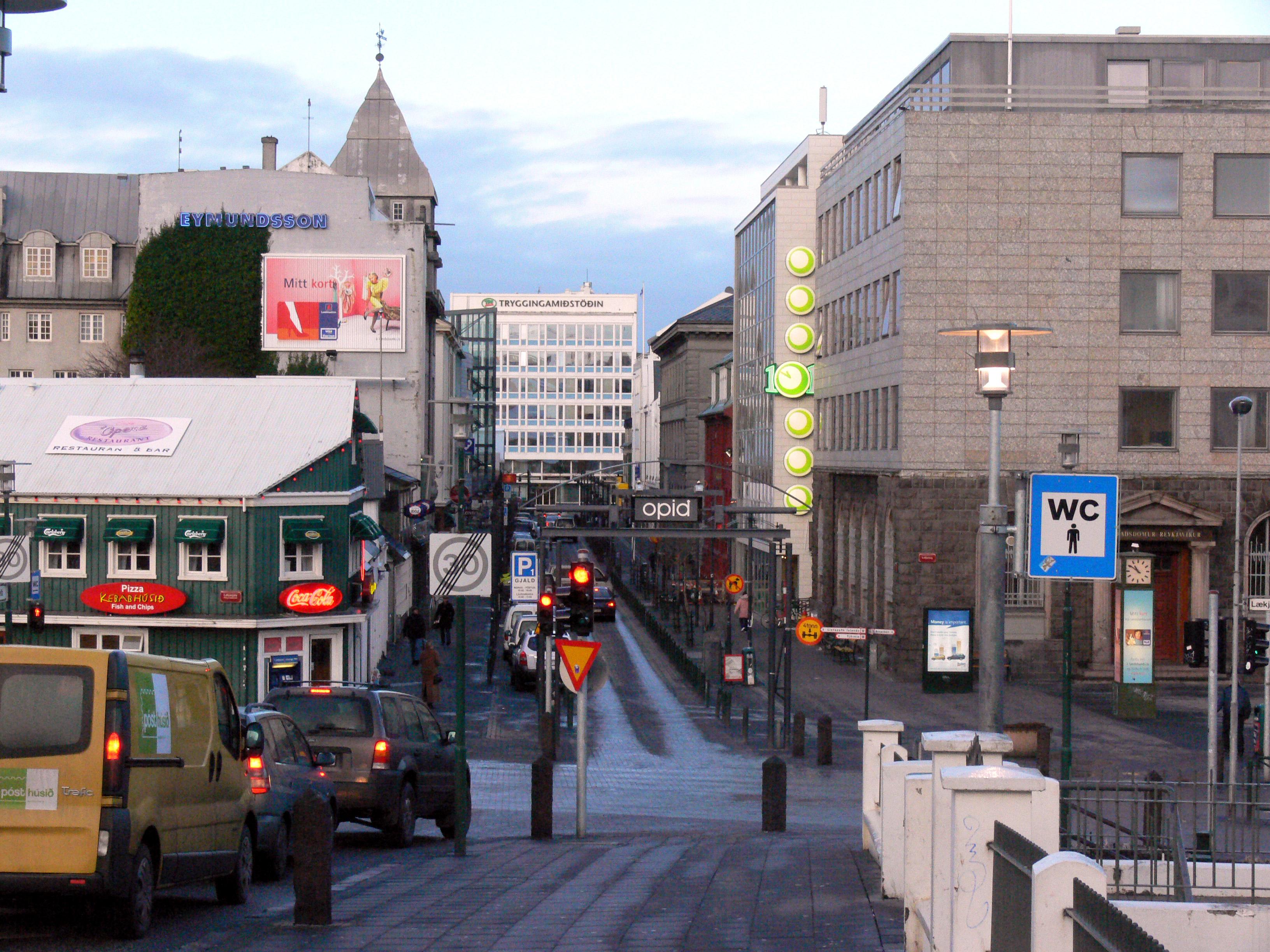 Iceland City Bus Tour