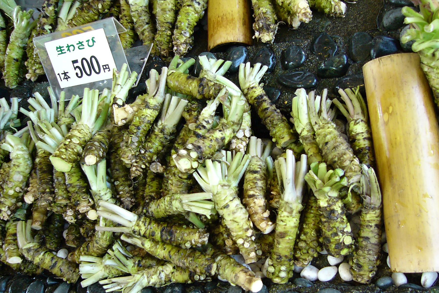 FileDaio wasabi farm11s1800jpg  Wikimedia Commons # Wasbak English_182340